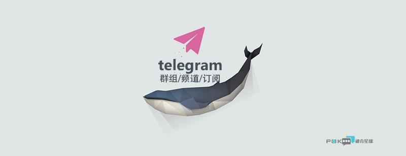 Telegram电报群汇总分享