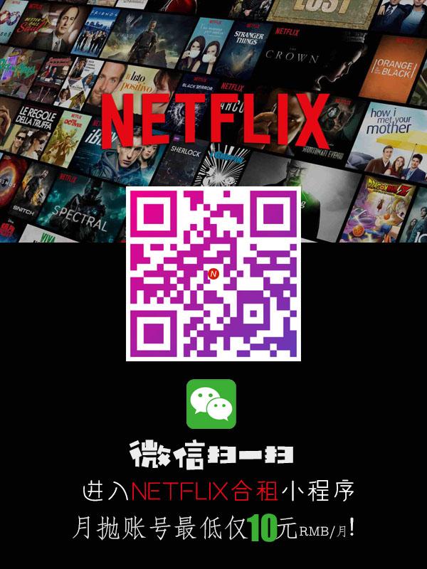 Netflix(网飞)共享账号插图