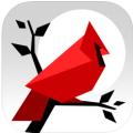 Cardinal Land – 拼图 & 七巧板拼图-亲子好帮手